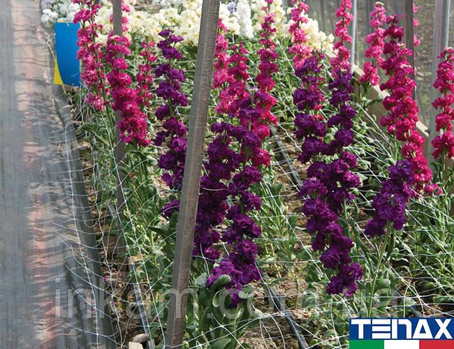 Сетка шпалерная цветочная Ортинет 7FG 1,02х1000 м (Tenax - Италия)