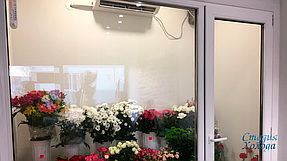 Холодильная камера демонстрации цветочной продукции в городе Цюрупинск 2