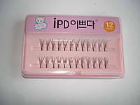 Ресницы для наращивания IPD №12, пучковые, с клеем, фото 1