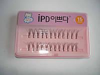 Ресницы для наращивания IPD №15, пучковые, с клеем