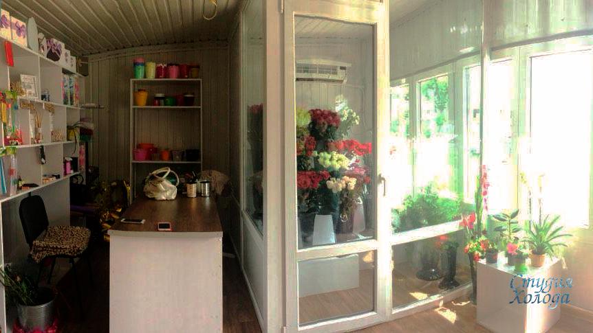 Холодильная камера демонстрации цветочной продукции в городе Виница