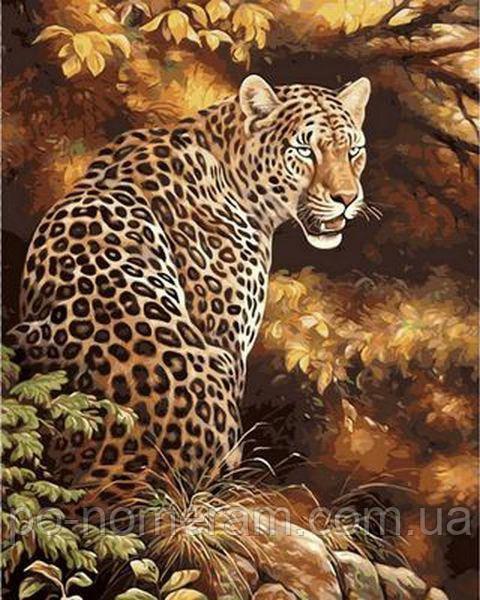 Картина по номерам Леопард в осеннем лесу (MR-Q496) 40 х ...