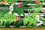 """Ткань хлопковая """"Попугаи Какаду в тропиках"""" на чёрных полосках (№1402), фото 5"""