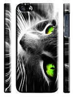 Чехол для iPhone 4/4s/5/5s/5с/6  кот зеленые глаза