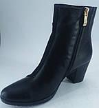 """Ботинки демисезонные из натуральной замши и натуральной кожи на каблуке от производителя модель """"БК - 02В"""" , фото 2"""