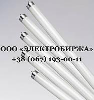 Люминесцентные лампы 36 Вт G13, Люминесцентная лампа 36 Вт,