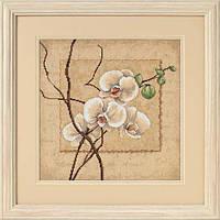 Набор для вышивания крестом Восточная орхидея/Oriental Orchids DIMENSIONS 70-35176
