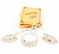 Серебряный набор с золотыми пластинами 089 (серебро с золотом)