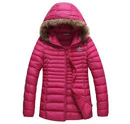 Куртка женская осенняя Adidas / CRT-568 (Реплика)