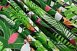 """Ткань хлопковая """"Попугаи Какаду в тропиках"""" на чёрных полосках (№1402), фото 6"""