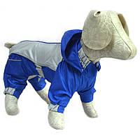 Комбинезон-дождевик с капюшоном для собак синий