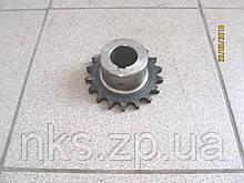 Зірочка Z18 (19,05) Z-224 Sipma