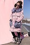 Новинка - пуховик для девочки р 116 - 158, модель Полианна зима 2018/2019 Nui very, фото 3