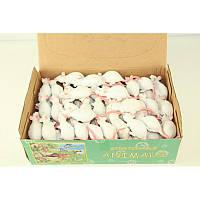 Животные мышь белая 96 шт. в коробке тянучка
