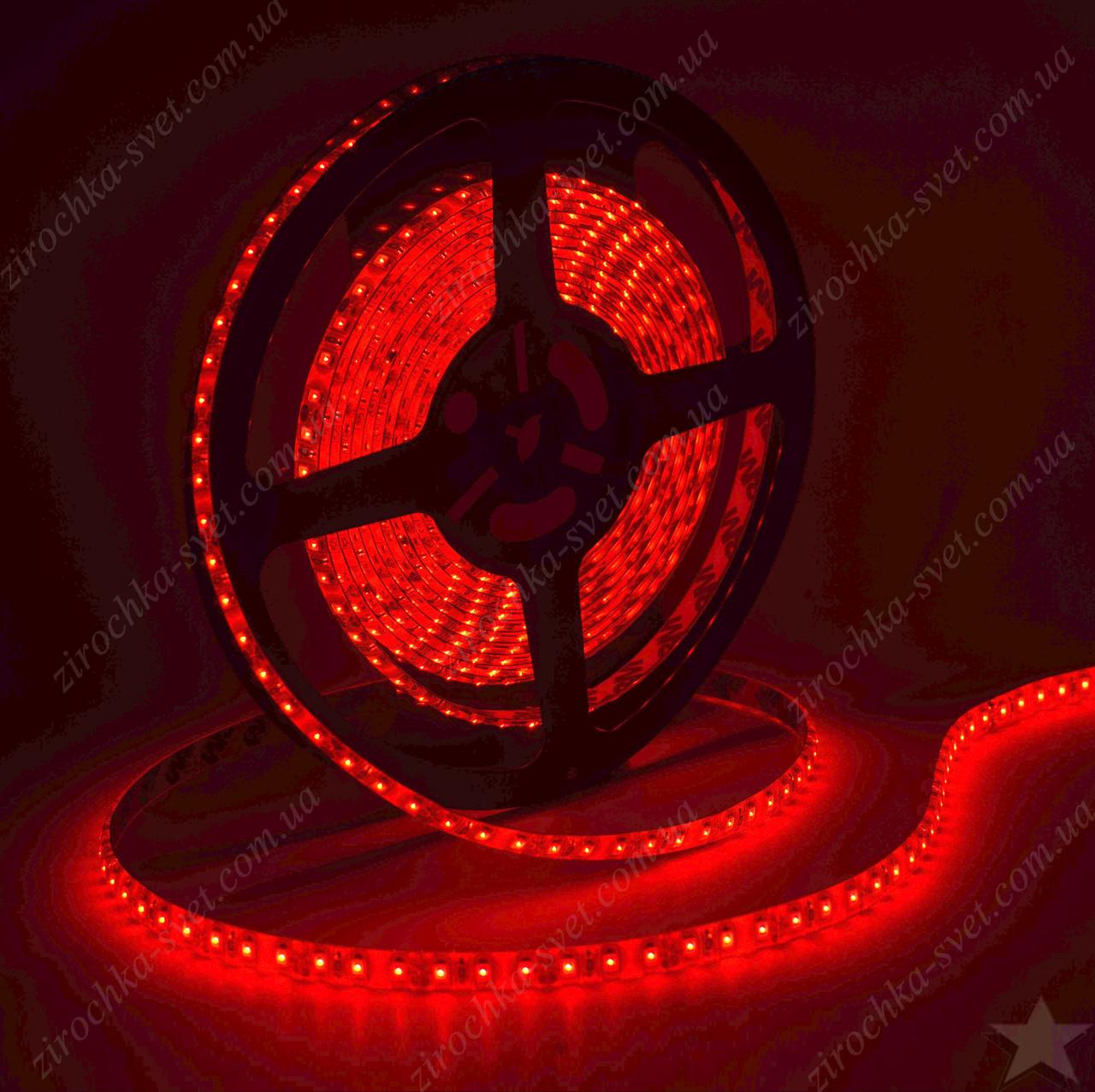 Светодиодная лента красная 12в 120шт/м smd3528 IP65 влагозащищенная (в силиконе) 9,6 Вт/м Motoko