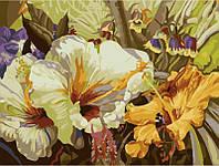 Картины по номерам 30 х 40 см. Экзотические цветы