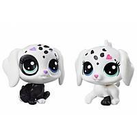 Собачки Littlest Pet Shop Black and White Puppy BFFs