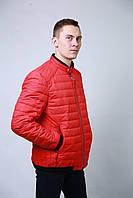 Демисезонная весенняя мужская Куртка на синтепоне
