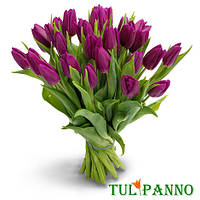 "Букет тюльпанов ""Purple Prince"""