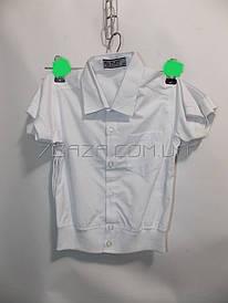 030e6f2c Рубашка детская школьная на мальчика (1-4 лет) - купить оптом со склада
