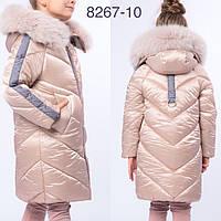 Стильная Зимняя Куртка для Девочки с Мехом в Цвете Св. Бежевый-серый Рост 134-162 см