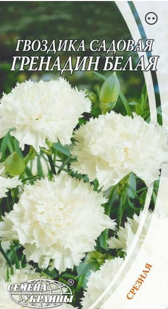 Семена цветов Гвоздики садовой Гренадин Белая (Семена)