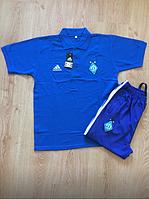 Футболка Polo Adidas Динамо Киев #2