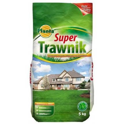 Насіння трави газонної Planta Super Trawnik 5кг, фото 2