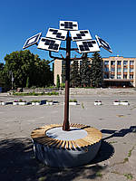 Сонячне дерево у Звенигородці