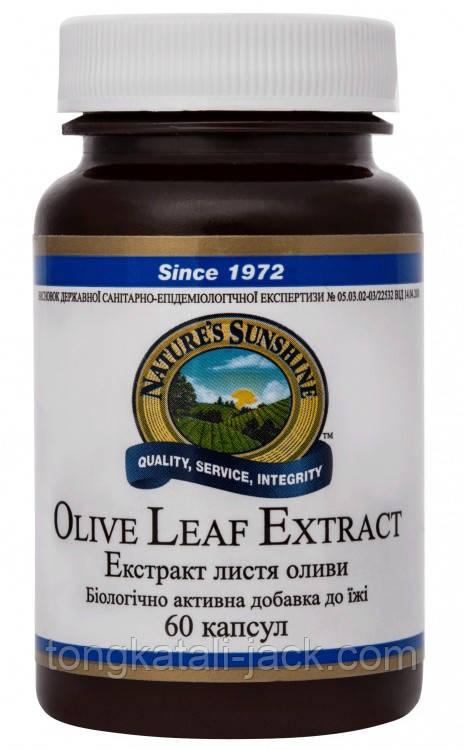 Экстракт Листьев Оливы (Olive Leaf Extract)