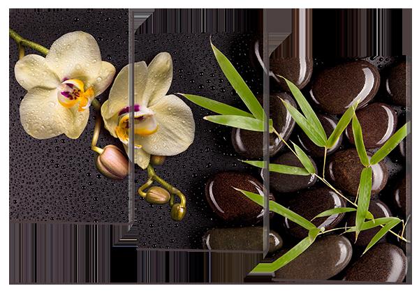 Модульная картина Цветы на камнях