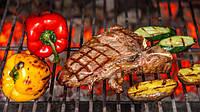 Печь на углях хоспер для кафе, ресторанов, уличной торговли ПДУ 1200