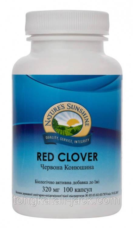 Красный Клевер (Red Clover)