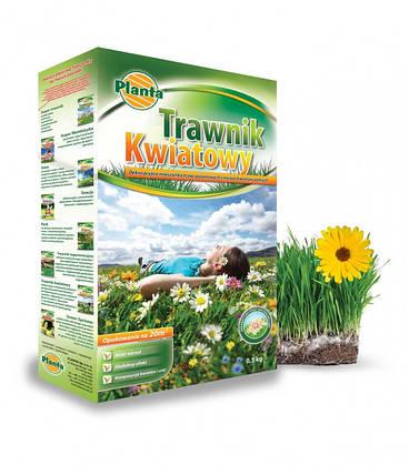 Цветущий газон Trawnik Kwiatowy Planta 0,9кг Мавританский газон, фото 2