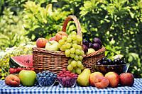 Органічне вирощування плодів, ягід та горіхів набуває в Україні все більшої популярності