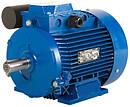Однофазні електродвигуни побутового призначення 220v