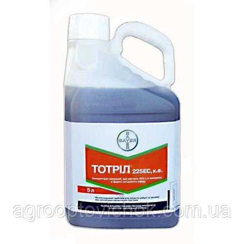 Тотрил (5л)