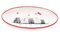 Блюдо керамическое с объемным рисунком Кошкин дом, фото 1