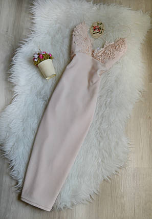 Новое облегающее платье с кружевом из Cameo rose каталога New Look, фото 2