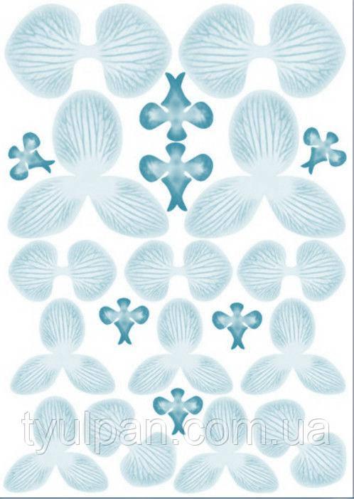Вафельные картинки для вафельной флористики орхидея голубая