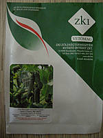 Огурец ZKI - 104 100c