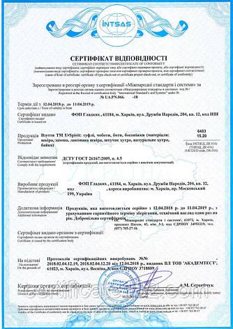 Сертификация обуви, одежды и других продовольственных товаров, фото 2