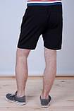 Чоловічі трикотажні шорти Reebok, тканина лакоста, темно-синього кольору, фото 4