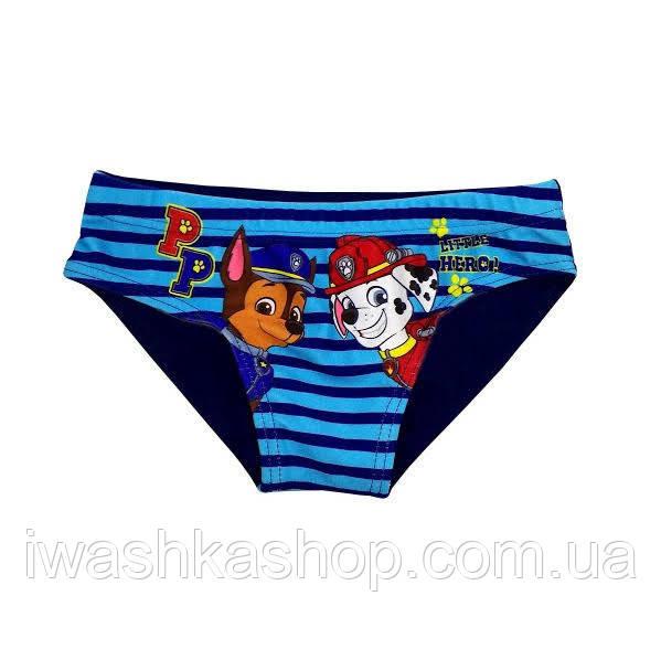 Синие плавки для мальчика Щенячий патруль, Disney Paw Patrol  Nickelodeon р. 74 на 1 год