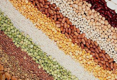 Протравители для обработки семян и защиты картофеля, томата, перца, баклажана, капусты