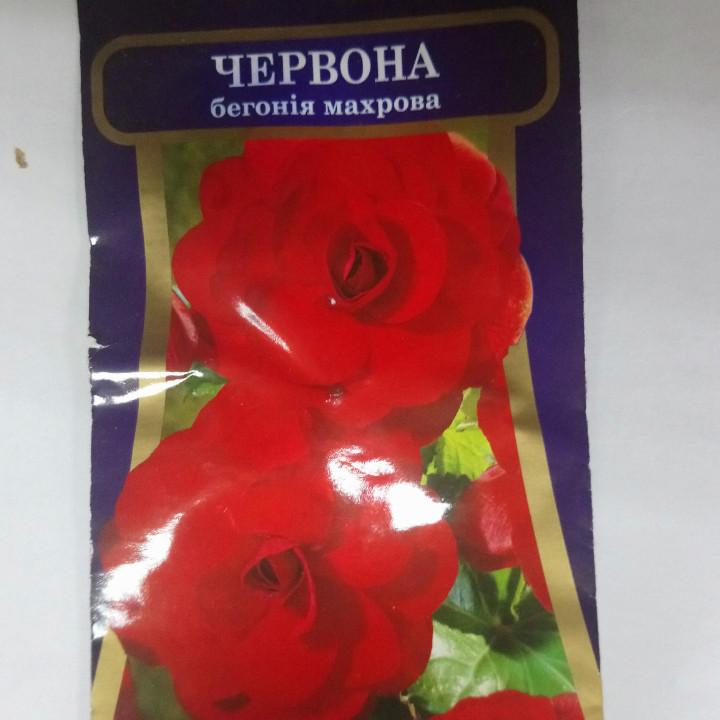Семена комнатных растений Бегонія бордова махрова