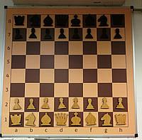 Настенные / Демонстрационные / Шахматы. Демонстрационная шахматная доска
