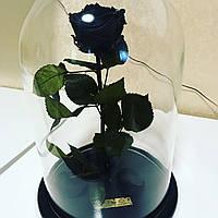 Роза в стеклянной колбе Чёрный бриллиант