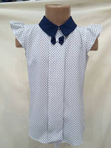 Блуза школьная для девочки короткий рукав 128-134-140-146-152