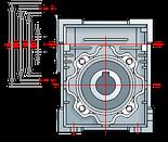 Червячный редуктор ESV-50, фото 2
